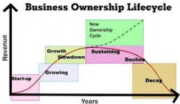 Business Lifecyle Curve