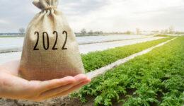 dreamstime_m_213032725 Farm and 2022 Tax Year